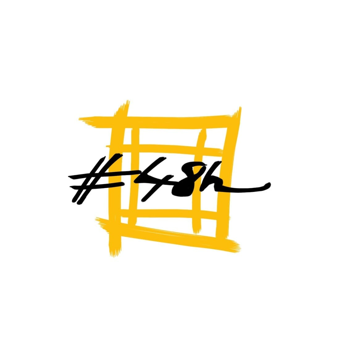 #48h logo facebook